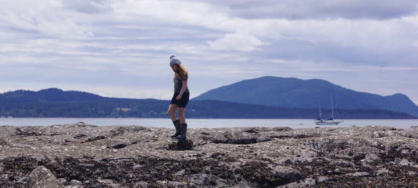 Sucia Island: A land of fossils and rocky dreams